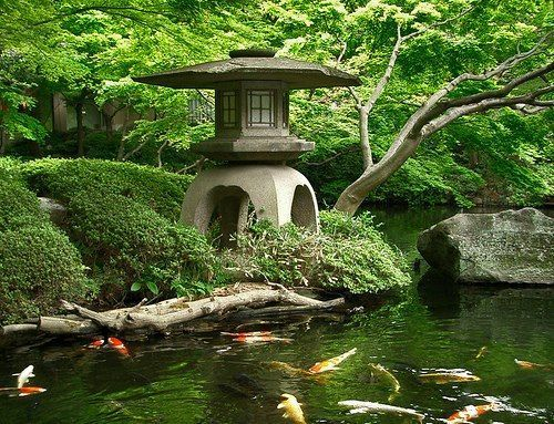 Image du Blog vanille63.centerblog.net