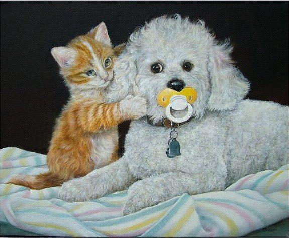 Chiens et chats dessins photos - Dessin chat rigolo ...